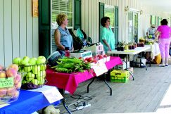 On Friday afternoons the Amma Community Center becomes a regional Farmers Market with delicious fruits, vegetables and jellies from local farmers.