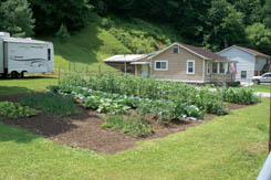 Bentree residents Henry and Bid Legg planted this delicious looking vegetable garden