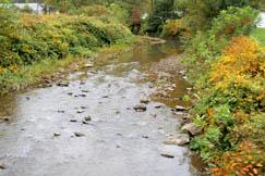 The Lick Fork of Twentymile Creek runs through Dixie