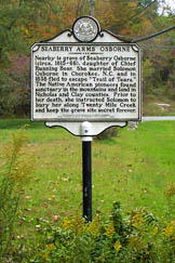This historic marker notes the life and grave of Chief Running Bear's daughter, Seaberry Osborne. She and her husband came to Dixie in 1838 and made it their home.