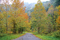 Mahan's scenic lane