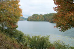 About 5 miles from Pax, Plum Orchard Lake and Wildlife Management Area (WMA) provides fishing, hunting, camping and other recreational opportunities.
