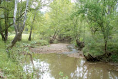 Sycamore Fork runs alongside County Route 60 through most of Tariff.